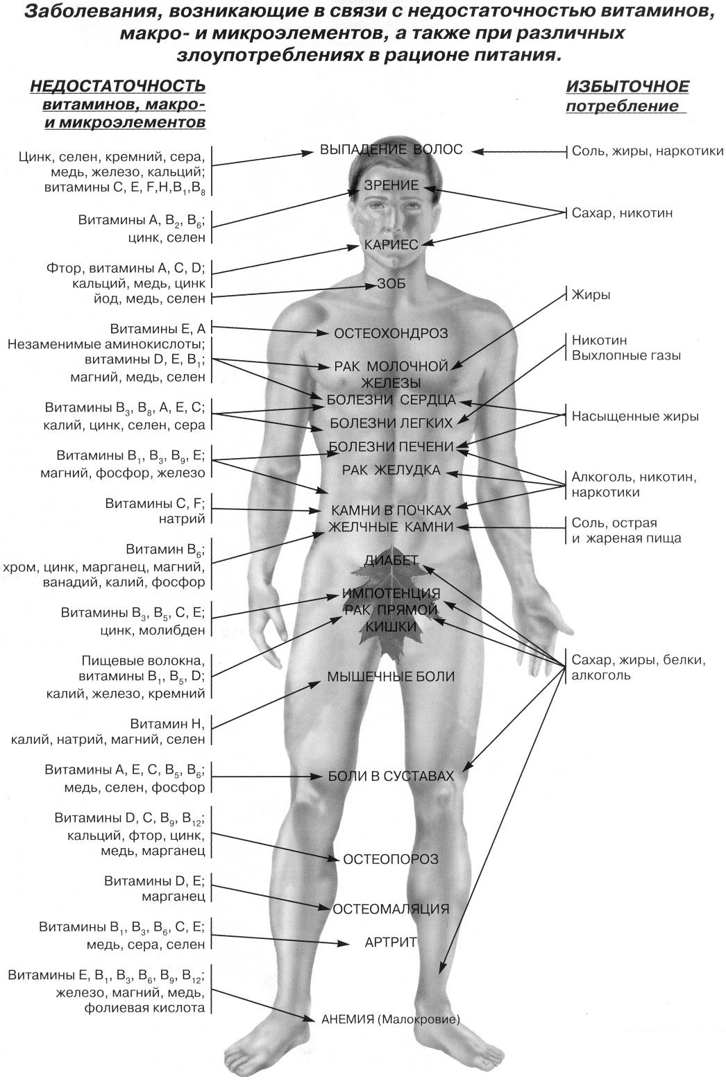 Чувствительные места на теле у женщин 8 фотография
