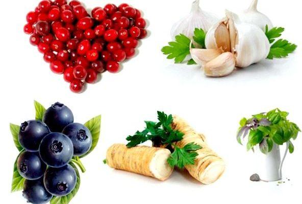 6 Эффективных природных антибиотиков