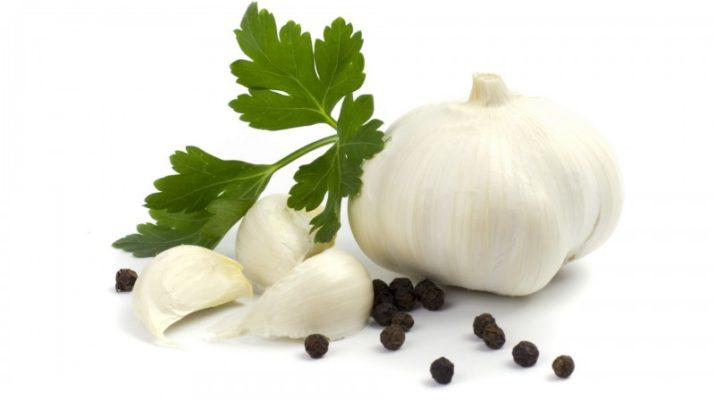 Чеснок (описание) и рецепты