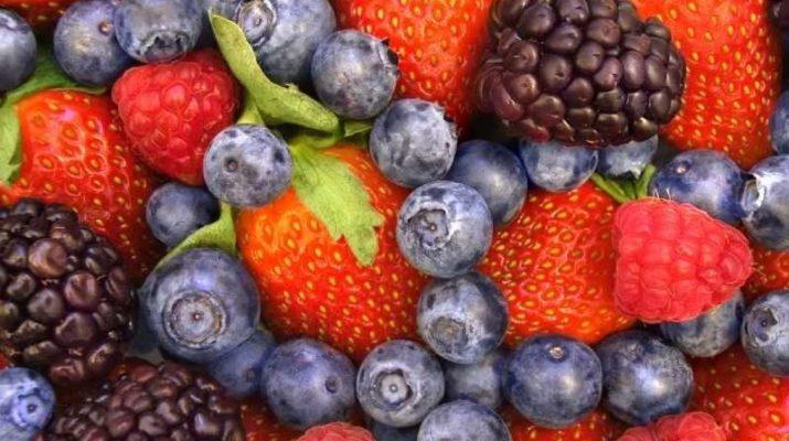 Роль антиоксидантов в жизни каждого человека