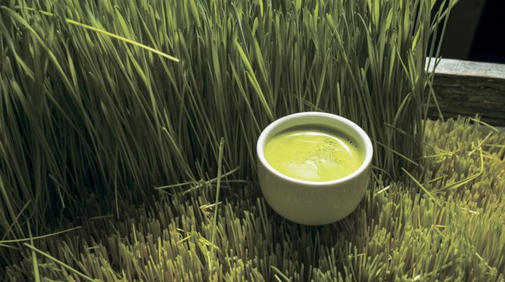 Крайности здорового питания