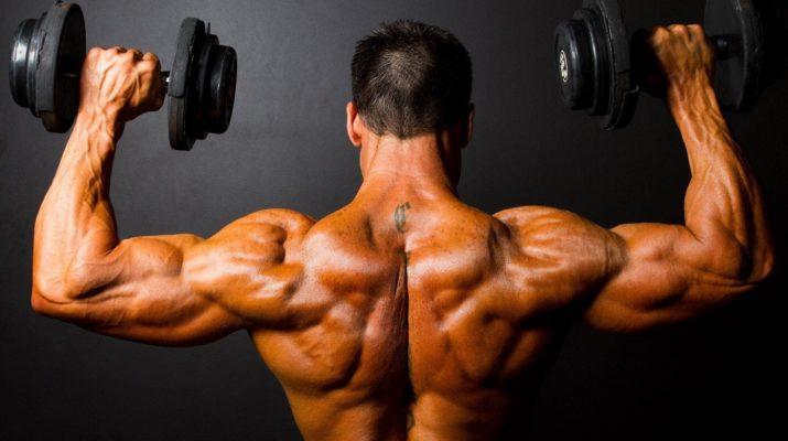 Пауэрлифтинг, гиревой спорт, бодибилдинг, тяжелая атлетика