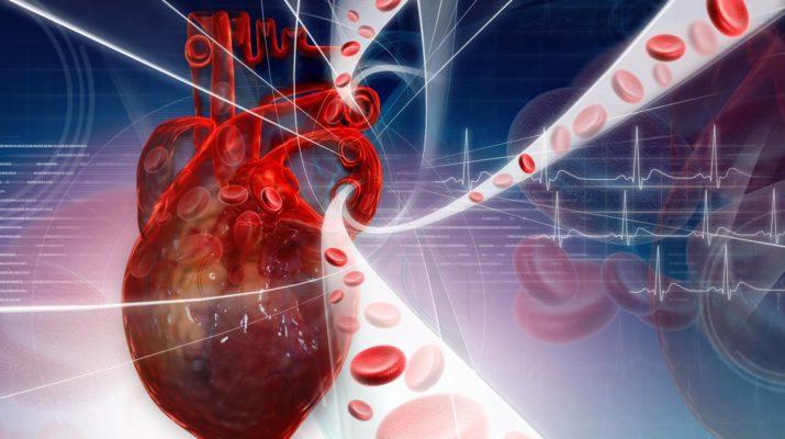 Сердечно-сосудистые заболевания (другие причины