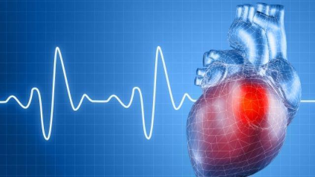 Тайны нашего серцебиения