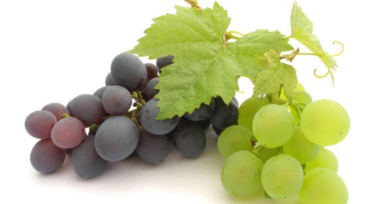 Виноград. Народная медицина