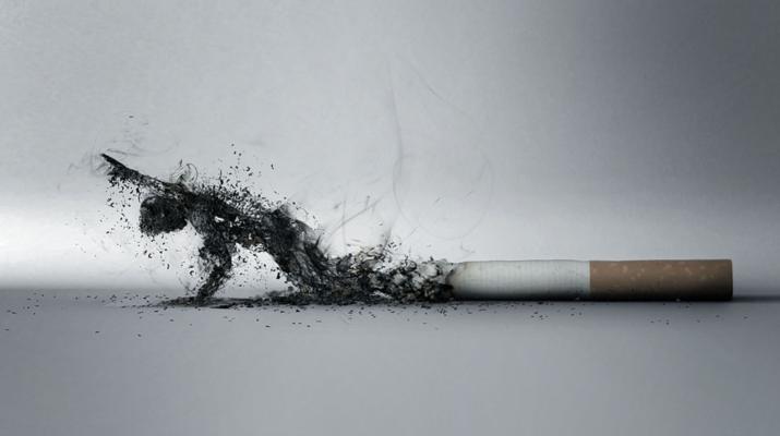 Выводим никотин