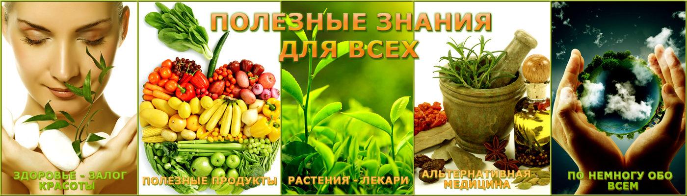 Здоровье и здоровоепитание